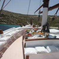 dolphins-of-delos-cruise-boat (1)