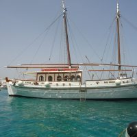 dolphins-of-delos-cruise-boat (2)