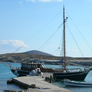 quarantine-of-delos-cruise-boat (3)