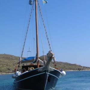 quarantine-of-delos-cruise-boat (5)
