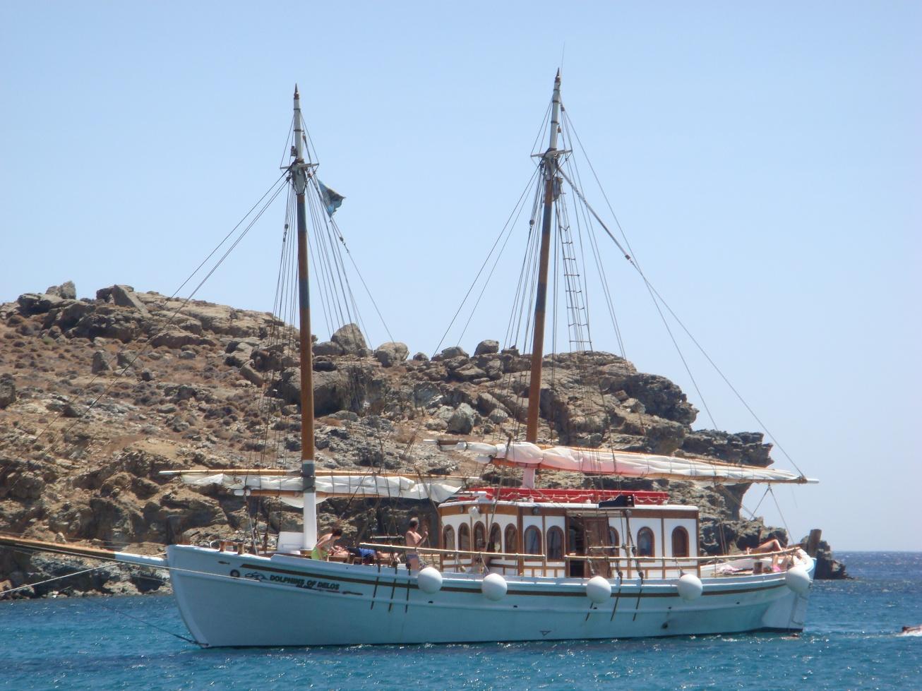 Dolphins of Delos - Cruise Boat Mykonos (2)