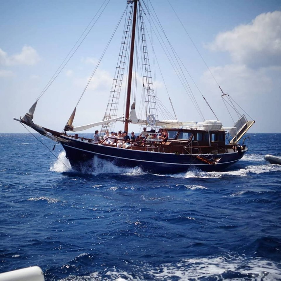 Quarantine of Delos cruise boat